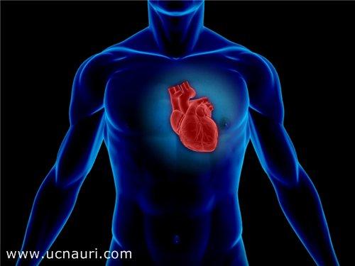 გულის ნერვოზი – ნახეთ რა სიპტომები ახასიათებს მას